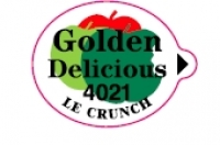 GOLDEN 4021 - Sticks fruits - Pommes export - Le crunch