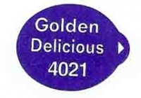 GOLDEN DELICIOUS  - Sticks fruits - Pommes export - Sainsburry