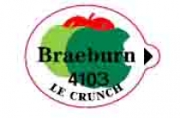 BRAEBURN 4103 - Sticks fruits - Pommes export - Le crunch